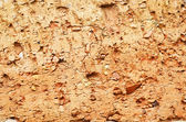 Old plaster wall texture background — Stock Photo