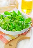 Corn salad — Stock Photo