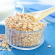 Oat flakes — Stock Photo #26830281