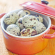 Quail eggs — Stock Photo #27016273