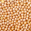 Chickpeas — Photo #27542223