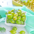 Gooseberry — Stock Photo #28175331