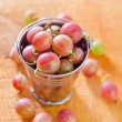 Stock Photo: Gooseberry