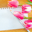 Stock Photo: Tulips and note