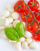 Mozzarella — Stock Photo
