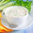 Stock Photo: Cold soup