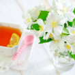 Jasmin tea — Stock Photo