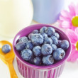 Stock Photo: Blueberry