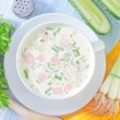 Cold soup — Stock Photo #30161041