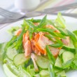 Salad with salmon and cucumber — Stock Photo #30329083