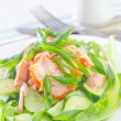 Salad with salmon and cucumber — Stock Photo #30329097