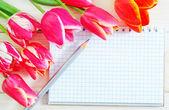 Tulipes et note — Photo