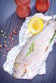 Roher Fisch — Stockfoto
