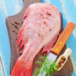 Ocean perch — Stock Photo