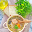 Fresh soup — Stock Photo