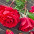Roses on wooden background — Stock fotografie