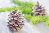 Pinecones on a table — Stock Photo