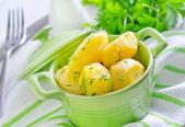 Boiled potato — Stock Photo