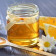 Honey — Stock Photo #40948219