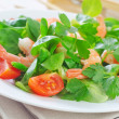 Stock Photo: Shrimps with salad