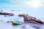 Küste des meeres — Stockfoto