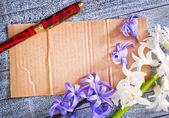 Observera och blommor — Stockfoto