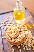 Cedar nuts — Stock Photo