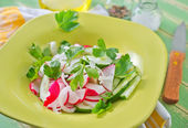 Salad in a plate — Stock Photo