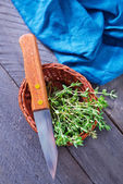 Fresh green Thyme — Stock Photo