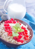 Oat flakes with red currant — Stock Photo
