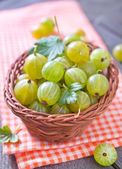 Gooseberry in basket — Stock Photo