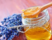 Honey and lavender — Stock Photo