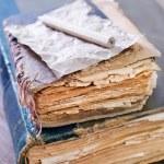 Old books — Stock Photo #50076539