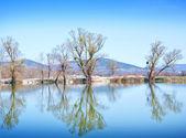 Lake in Crimea — Stock Photo