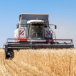 Combine harvester working on a wheat field — Stock Photo #29651345