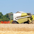 Combine harvester working on a wheat field — Stock Photo #29651365