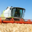 Combine harvester working on a wheat field — Stock Photo #29651387