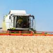 Combine harvester working on a wheat field — Stock Photo #29651455