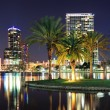 Orlando night scene — Stock Photo #13506097