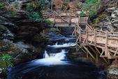 Outono creek com trilhas para caminhadas e folhagem — Foto Stock