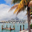 Miami city tropical view - Stockfoto