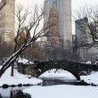 New York City Manhattan Central Park panorama — Stock Photo