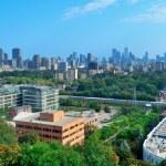 Toronto city skyline — Stock Photo