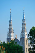 Notre Dame Basilica — Stok fotoğraf