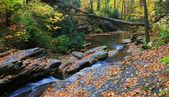 Otoño creek en rocas — Foto de Stock