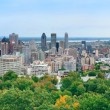 Montreal day view panorama — Stock Photo #21110353
