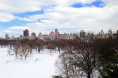 New york city manhattan central park in inverno — Foto Stock