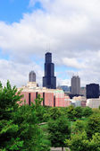 Chicago skyline over park — Stock Photo