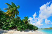 Virgin Islands Beach — Stock Photo