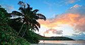 Beach sunset panorama — Stock Photo